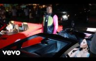 Rake It Up (feat. Nicki Minaj) Yo Gotti $1.29 Itunes & Video