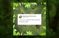 Africa Weezer $1.29 Itunes Video