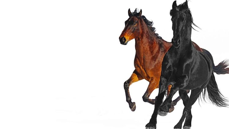 Old Town Road (feat. Billy Ray Cyrus) [Remix] Lil Nas X $1.29 Itunes Video