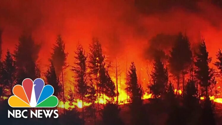 Everything Is A Total Loss': Entire Towns Devastated By Oregon Wildfires | NBC News NOW